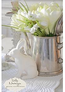 Zajączek White